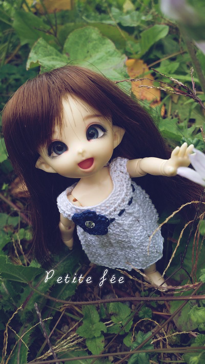 NEW DOLL: LDOLL ! ❤ Mes petites bouilles ~ NEWP.4 21255262169_42556c33c4_b