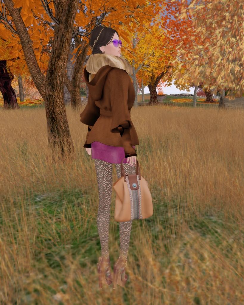 Autumn Stroll02