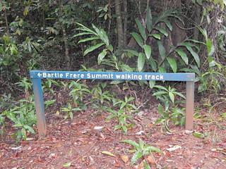 Trailhead, western summit track, Mount Bartle Frere