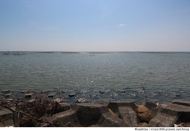 嘉義景點 東石漁港 東石漁人碼頭 嘉義海鮮 東石海鮮 漁港 漁人碼頭 東石美食 東石海鮮4