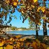 A day at the beach! #pictonbeach #princeedwardcounty #falldays #autumnlover