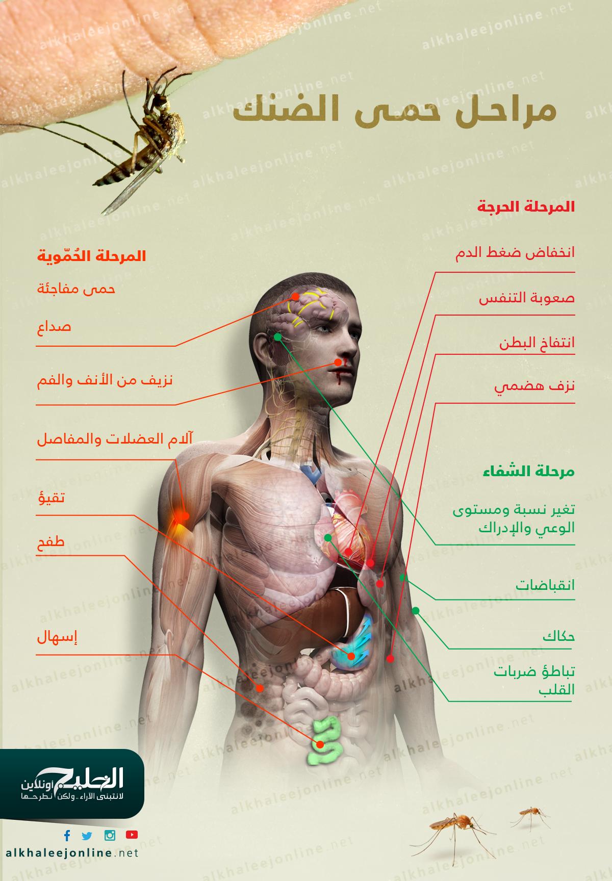 حمى-الضنك