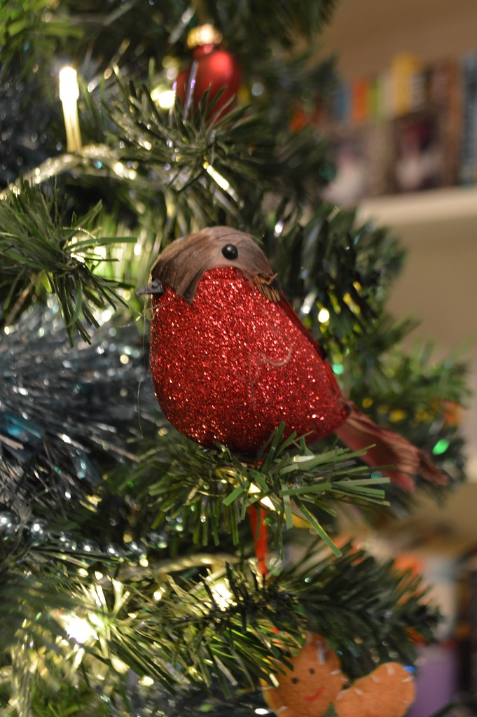 a picture of a red robin on a christmas tree