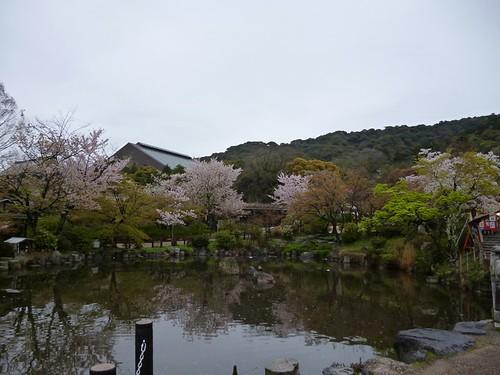 maruyama park 2