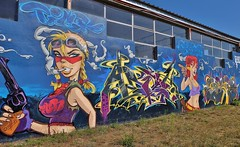 Montauban, graffiti