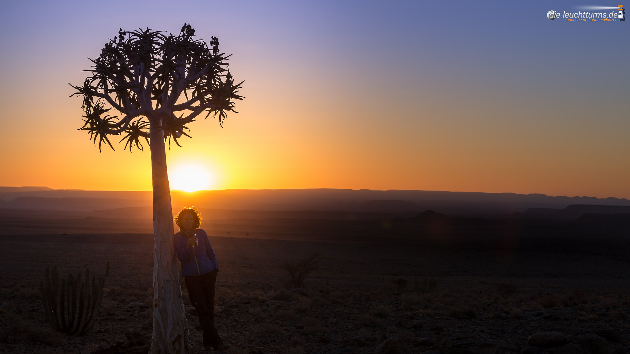 Sundowner under a quiver tree