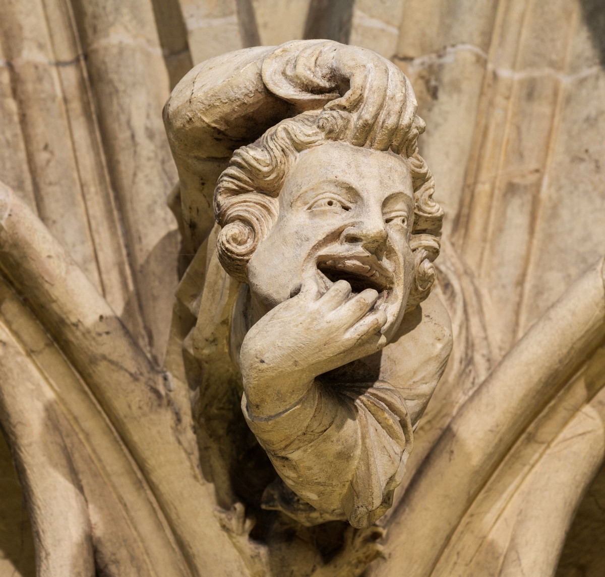 Grotesque on the wall of the chapter house. Credit David Iliff