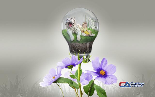 Carlos Atelier2 - Flores luz