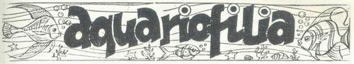 Boa Noite, Nº 66, Dezembro 1977 - 30a