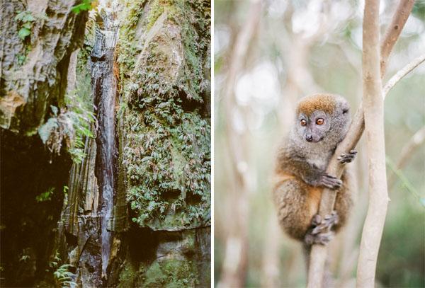 RYALE_Madagascar_Blog1_027