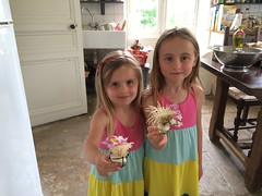Niamh & Orla Honour Half-Welsh Heritage with Leek-Based Floral Arrangements - Photo of Saint-Jean-d'Angély