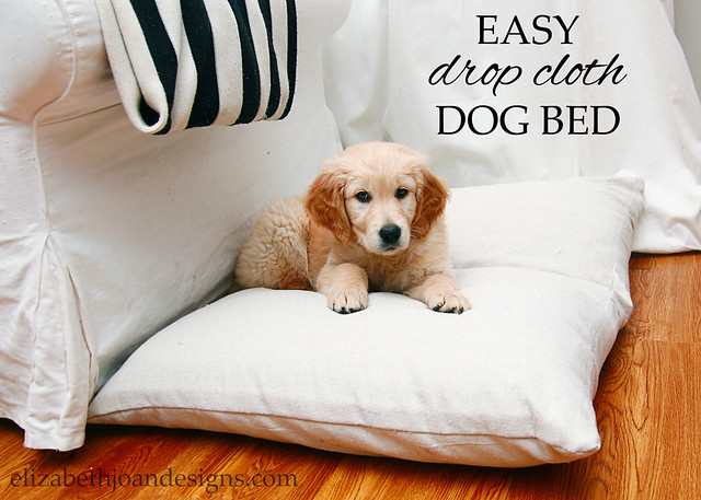 Easy Drop Cloth Dog Bed