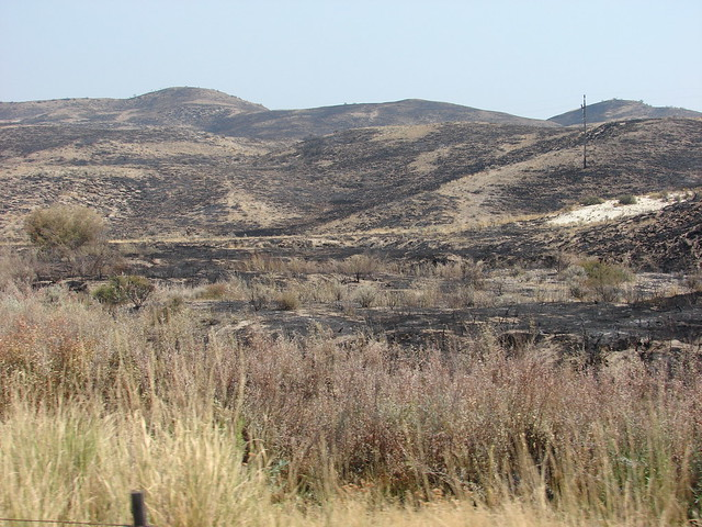 Scenes from the Soda Fire