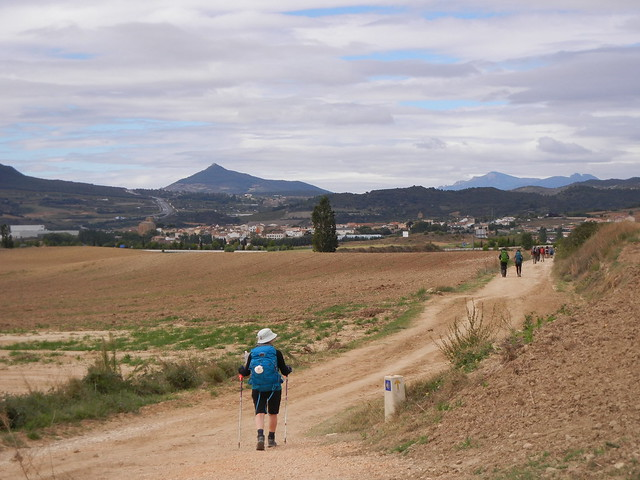 Punta La Reina to Estella