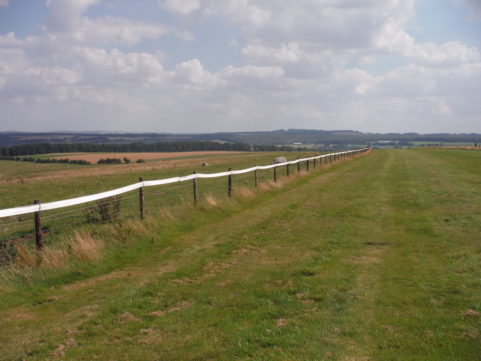 Gallops on Overton Down SWC Walk 255 Pewsey or Marlborough Circular via Avebury