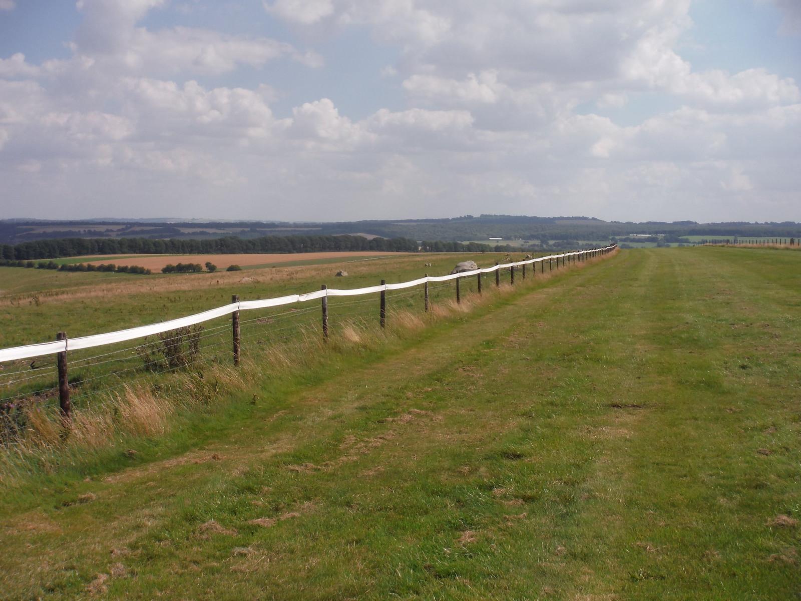 Gallops on Overton Down SWC Walk 255 Pewsey or Marlborough Circular via Avebury
