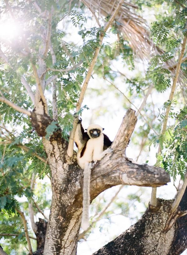 RYALE_Madagascar_Blog3_021