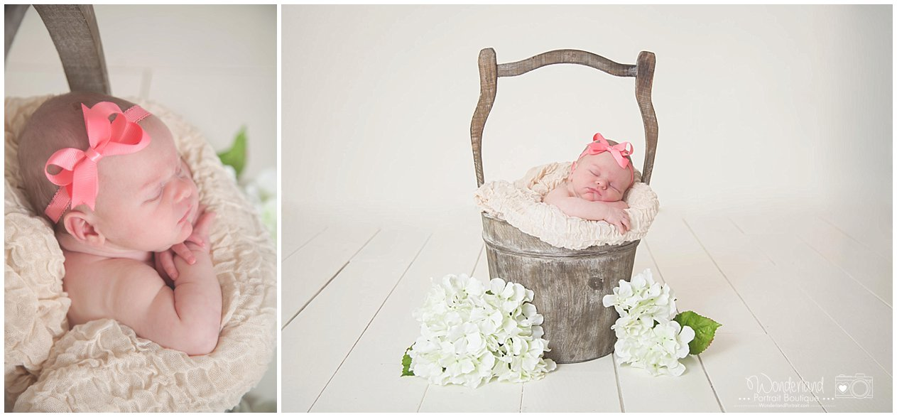 Newborn Girl in Bucket Pose Flowers Floor Fade