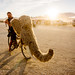 DSC01490 - Woolly Mammoth Bicycle - Burning Man 2015 by loupiote (Old Skool) pro