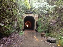 Rainy Brushy Mountain Tunnel