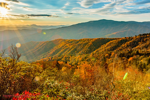 usa fall nature landscape geotagged outdoors photography unitedstates hiking tennessee hdr cosby greatsmokymountainsnationalpark crestmont mountcammerer geo:country=unitedstates camera:make=canon exif:make=canon geo:state=tennessee catonsgrove tamronaf1750mmf28spxrdiiivc exif:lens=1750mm exif:aperture=ƒ16 exif:isospeed=100 exif:focallength=17mm canoneos7dmkii camera:model=canoneos7dmarkii exif:model=canoneos7dmarkii geo:location=crestmont geo:lat=3575242000 geo:lon=8320639500 geo:city=cosby geo:lon=8316115667 geo:lat=3576359333 geo:lon=83161111666667 geo:lat=35763611666667