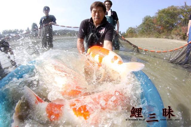 Hier komen juweeltjes van de hoogste orde uit het water!