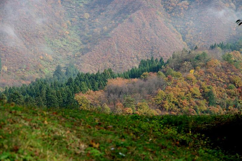 坂戸山の彩り_201511