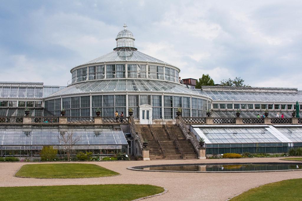 Copenhagen's Botanical Gardens | Copenhagen on a Budget