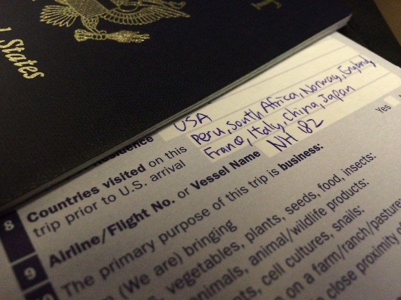 Summarizing my Little Big Trip on the immigration form.