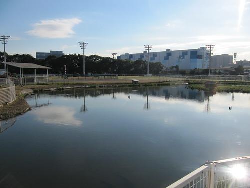 大井競馬場