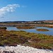 Stagni alle Saline Stintino - Sardegna by AGFA The Frog