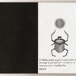Carnet de voyage hiéroglyphique pages 01 à 09