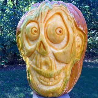 Pumpkin 3 2015