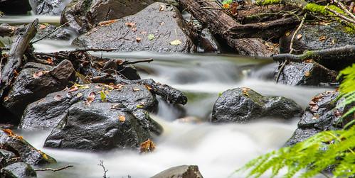 forest landscape se waterfall skog sverige vattenfall bäck hallandslän