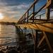 151021 Bass Harbor - Acadia National Park- Maine      -2774 by SergeLéonard
