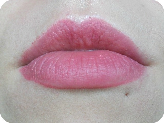 Born pretty Lip Liner Lip Swatch