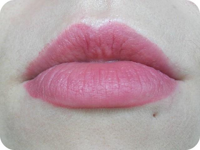 Born pretty Lip Liner Lip Swatch