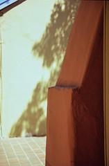 Adobe Wall San Antonio