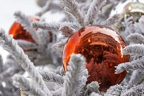 Magie des Marchés de Noël ! - Magic of Christmas !