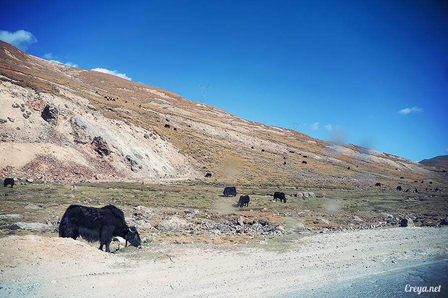 2015.12.29 ▐ Tibet 西藏踢北去 ▐ 身心大突破的公路之旅,從拉薩一路向東到林芝(上集 - 米拉山口與如廁記) 07.jpg