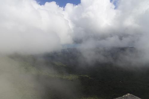 rainforest puertorico caribbean elyunque cloudforest feliznavidad elyunquerainforest elyunquenationalforest mountbrittontower mountbrittontrail