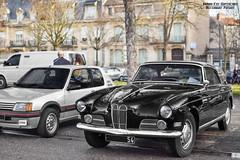 BMW 503