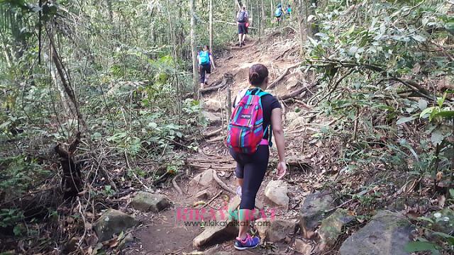pico-de-loro-mountain-climbing-10