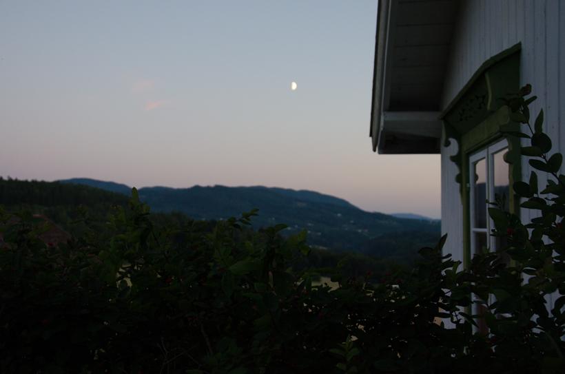 WITL15_sunday-blog-16