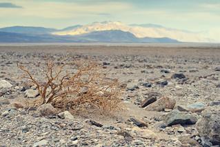 Death Valley Nationalpark, CA | Roland Krinner