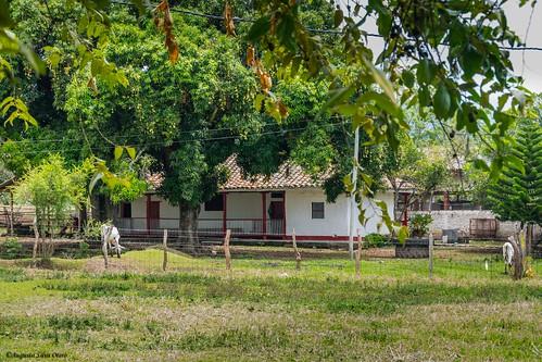 rural colombia florida valle paisaje casas valledelcauca