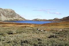 Left_Overs 052.30, Heddersvatn, Norway