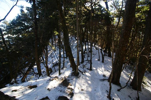 20141223-小金沢山-0435.jpg