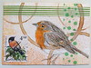 ATC spotted robin by anviss