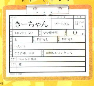 Fanbook_P013